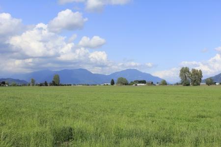 agricultural farm land: Rich Agricultural farm land Stock Photo