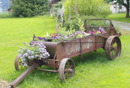 farm implement: An old farm implement has been transformed into a beautiful planter