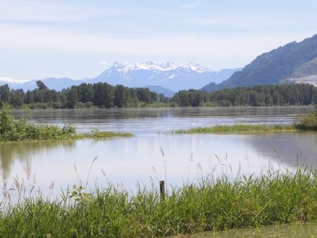 encroaching: The Flooded Fraser River and distant Northshore Mountains Stock Photo