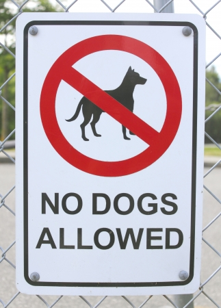 No Dogs Allowed Sign Imagens