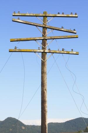 kracht: Broken Power Lines