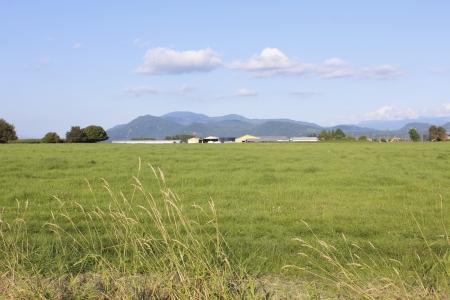comprised: Un oasi rurale composto da un ampio paesaggio Archivio Fotografico