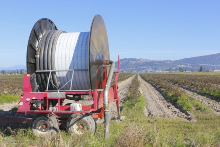 Industrial hose and reel for watering acreages Stok Fotoğraf