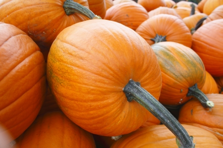 A pile of bright orange pumpkins ready for Halloween