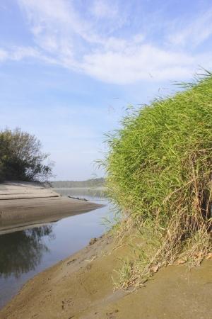 sandbar: A sandbar on a river