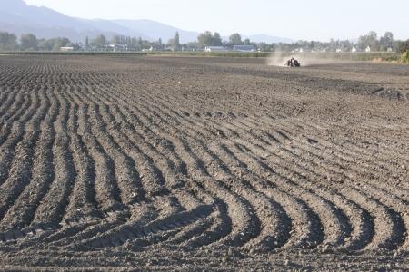 ploughed field: Deep furrows in the soil mark a freshly plowed field