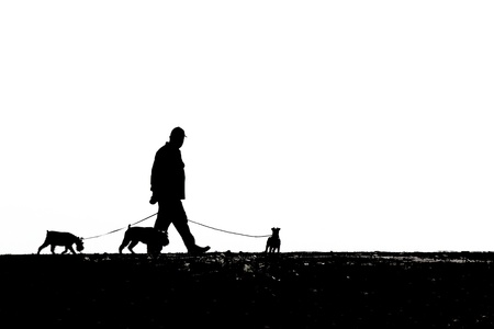 Silhouette of a man walking his dogs photo