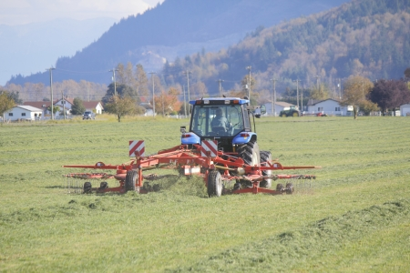 bundling: A machine is raking the hay; spreading it on the ground to dry and prepare for bundling