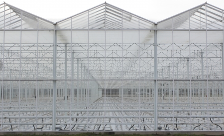 A sterile, cavernous and empty greenhouse