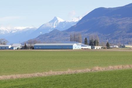 리치 농지는 캐나다의 남부 브리티시 컬럼비아에서 프레이저 밸리를 포함한다 스톡 콘텐츠