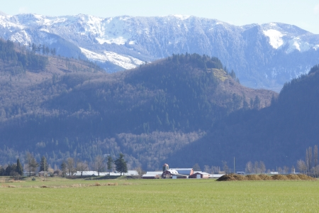 state owned: The Sumas Mountains in northern Washington State tower over valley farm land   Stock Photo