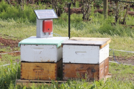 A small, portable solar pack generates an electrical field to protect beehive boxes