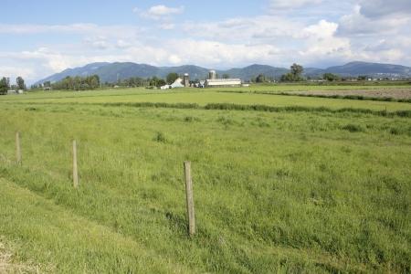 mainland: Wide open valley grassland in British Columbia s Lower Mainland region   Stock Photo
