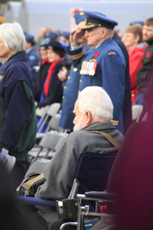 honouring: A war vetran in a wheelchair solemnly watches the RemembranceDay  ceremony in Abbotsford, British Columbia  Editorial