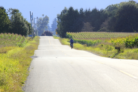 A lone cyclist enjoys the quiet solitude of cycling on a rural road. photo