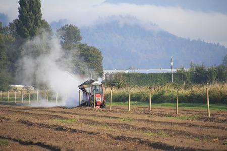 long shot: Un campo lungo di un agricoltore disperdere una nube di sostanze nutritive in un campo in preparazione per piante di mirtillo. Archivio Fotografico