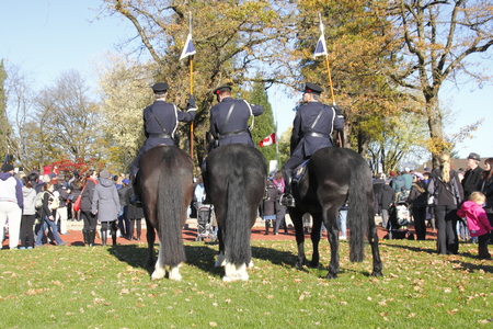 reverse: Mounted Vancouver police officers at a Remembrance Day service.