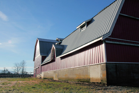 long lasting: 30 year metal roof is used on a modern barn to ensure long lasting protection.