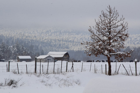 deep freeze: A rural landscape locked in the dead of winter. Stock Photo