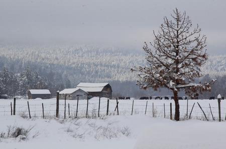 sub zero: A rural landscape locked in the dead of winter. Stock Photo
