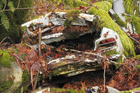 dumped: A car has been dumped into a ravine and is now being consumed by Mother Nature. Stock Photo
