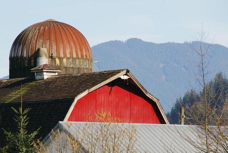rural skyline: Silo, barn and utility rooftops form a rural skyline.