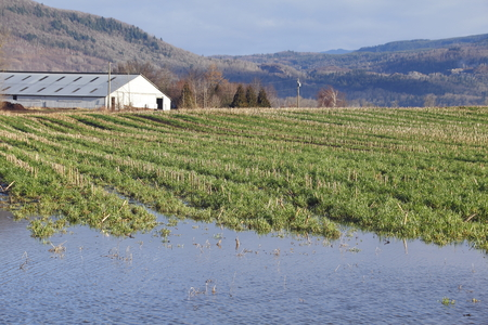acreage: Heavy winter rains have flooded farm acreage. Stock Photo