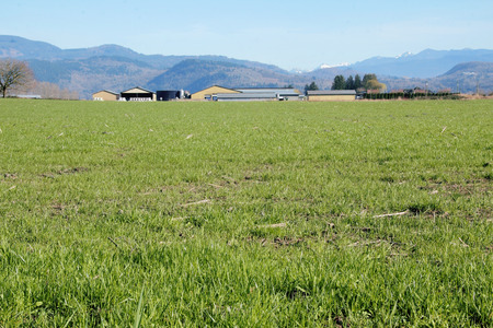 grazing land: Wide open view of a farm and grazing land in a rural valley. Stock Photo
