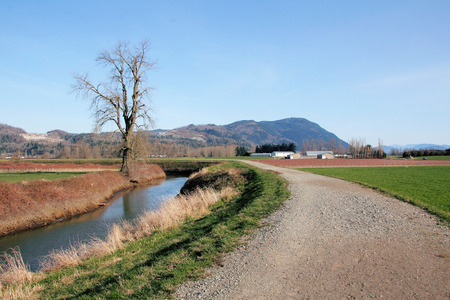 dyke: A dyke to hold back flood waters, provide water for agricultural land and provide a nature trail for citizens.