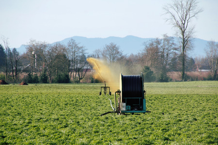 fertilize: Liquid manure is used to fertilize a field in Washington State. Stock Photo