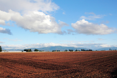 seeding: Farm land has been plowed and fertilized and is now ready for seeding. Stock Photo