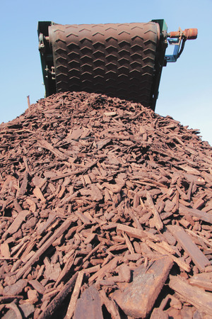 A conveyor belt on a wood chipper that is used to break down wood into small chips for agricultural purposes.