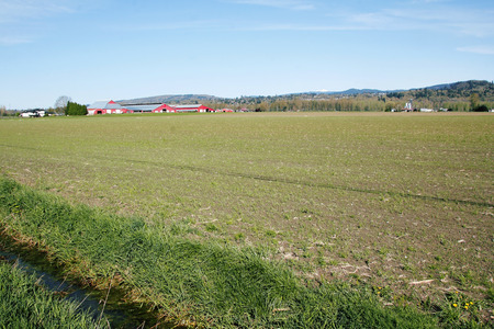 acreage: Green is just starting to emerge from the dark soil as agricultural crops take hold.