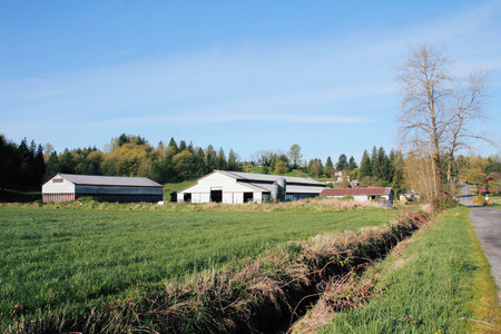 back country: A traditional Canadian farm deep in the rural back country.
