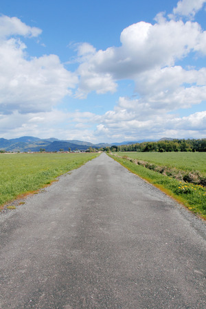 unmarked: A vertical view of a straight, single landed, rural road.