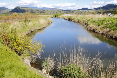 canada agriculture: A wide and deep canal provides abundant sources of water for fruit crops. Stock Photo