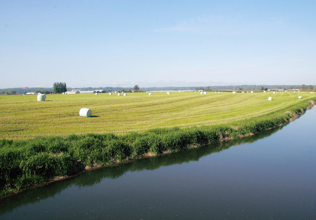 canada agriculture: A wide open agricultural landscape in western Canada