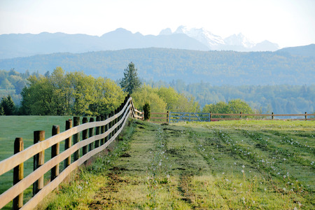 acreage: A long straight fence divides pasture land in a valley. Stock Photo