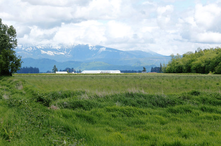 washington landscape: A rural landscape in northwestern Washington State near the Sumas Mountain Range.