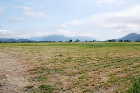 acreage: Widespread agricultural acreage spread across a valley.