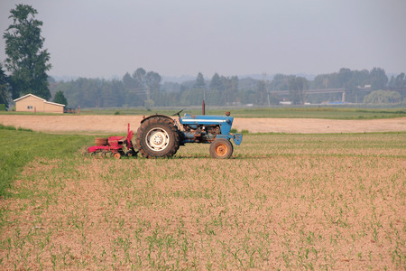 seeding: An older tractor is still used to work the farm crops.