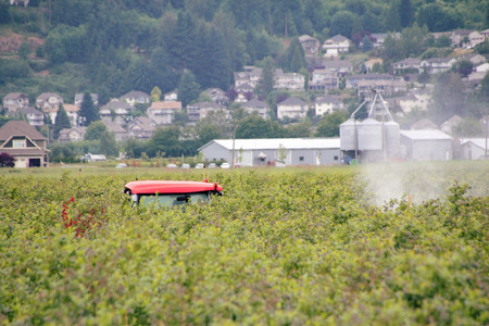 eradicate: A plume of pesticide trails behind a small tractor that is applying chemicals to eradicate insects.