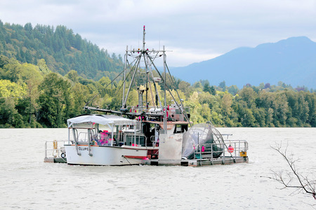 A Canadian government Troller is used to assess salmon stock in the Fraser River on June 12 2015.