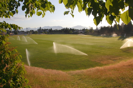 A recreational field is watered in the early morning to conserve water. Stock fotó