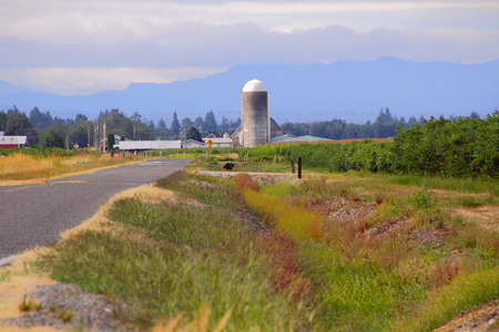 rural countryside: Wide open rural countryside and a tall silo in Washingtons back country Stock Photo