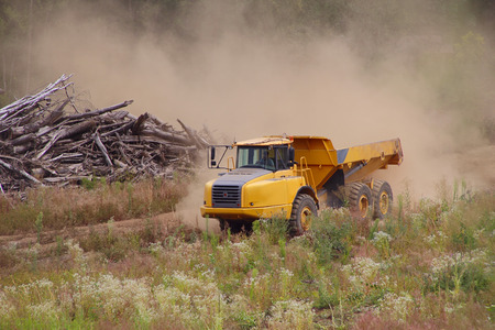 dump truck: Industrial Dump Truck