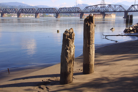 fraser river: Pylons, once used to support a pier, is all that remains.