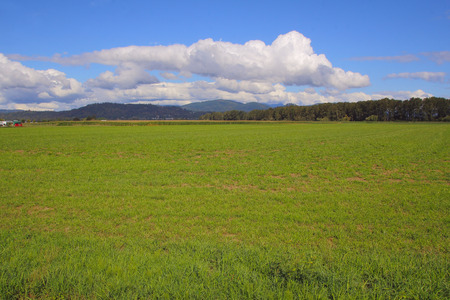 acreage: Acres and acres of prime Canadian grassland found on the west coast.