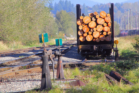 logging railways: A specially equipped train car used for shipping raw logs for processing. Stock Photo