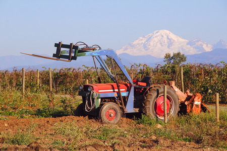 mount baker: An old, reliable tractor sits in a Washington field overlooking Mount Baker. Stock Photo